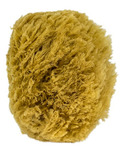 Urban Spa Full Body Sea Sponge