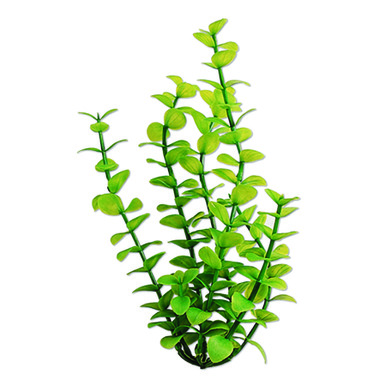 Tetra Water Wonders Aquarium Plant