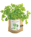 Potting Shed Creations Parsley Garden-in-a-Bag