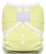 Thirsties Duo Wrap Hook & Loop Diaper Honeydew