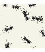 Elise Ants Beverage Napkins