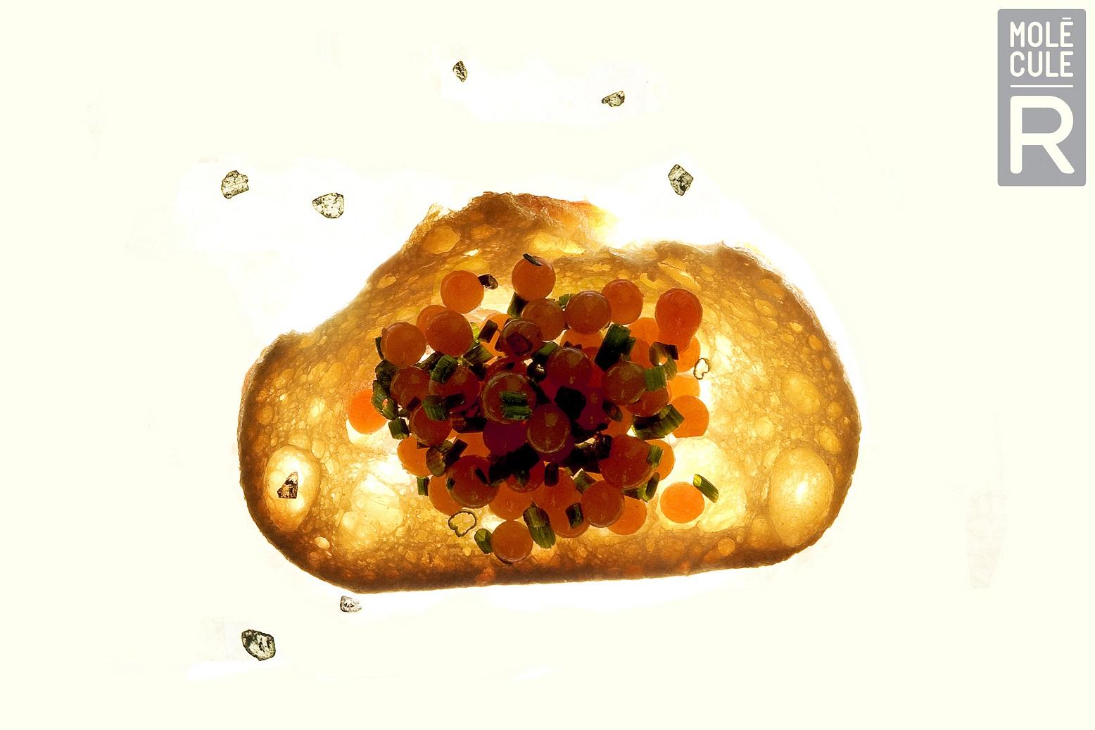 Buy molecule r cuisine r evolution molecular gastronomy kit at free shipping 35 in - Cuisine r evolution recipes ...